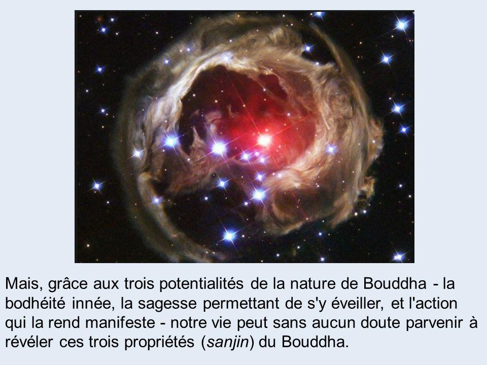 Mais, grâce aux trois potentialités de la nature de Bouddha - la bodhéité innée, la sagesse permettant de s y éveiller, et l action qui la rend manifeste - notre vie peut sans aucun doute parvenir à révéler ces trois propriétés (sanjin) du Bouddha.