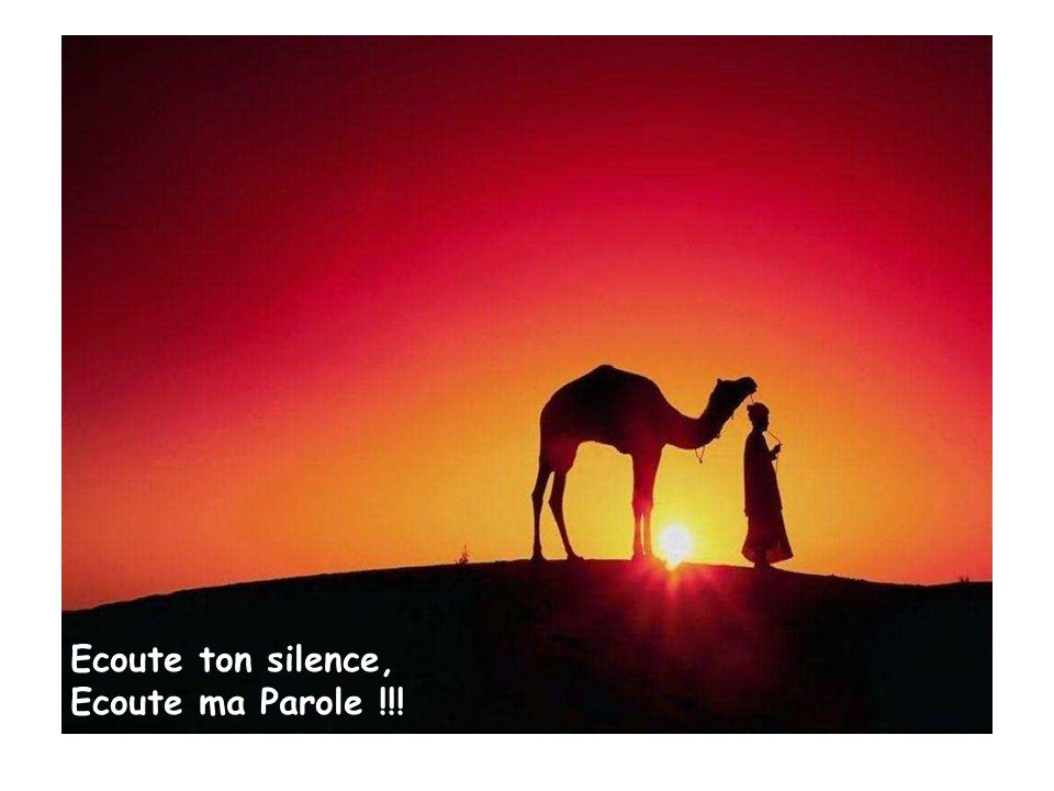 Ecoute ton silence, Ecoute ma Parole !!!