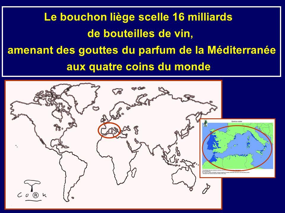 Le bouchon liège scelle 16 milliards