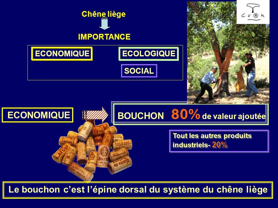 BOUCHON- 80% de valeur ajoutée ECONOMIQUE