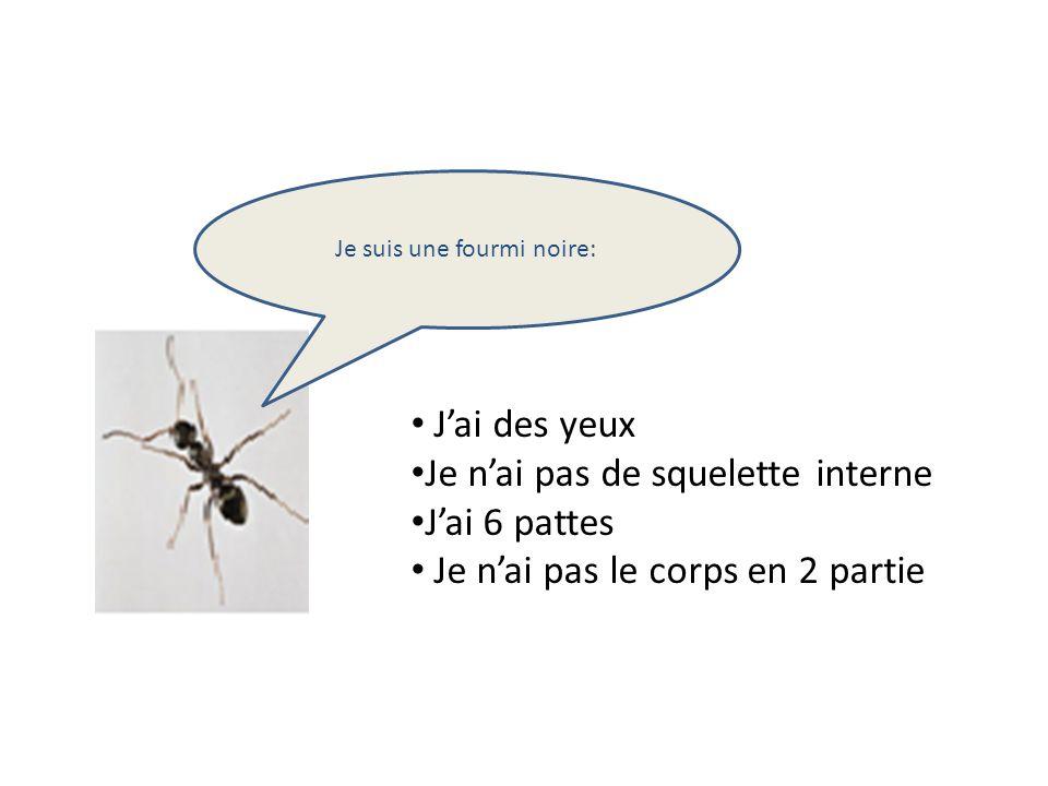 Je suis une fourmi noire: