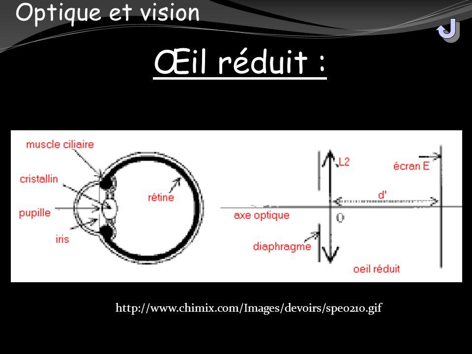 Œil réduit : Optique et vision