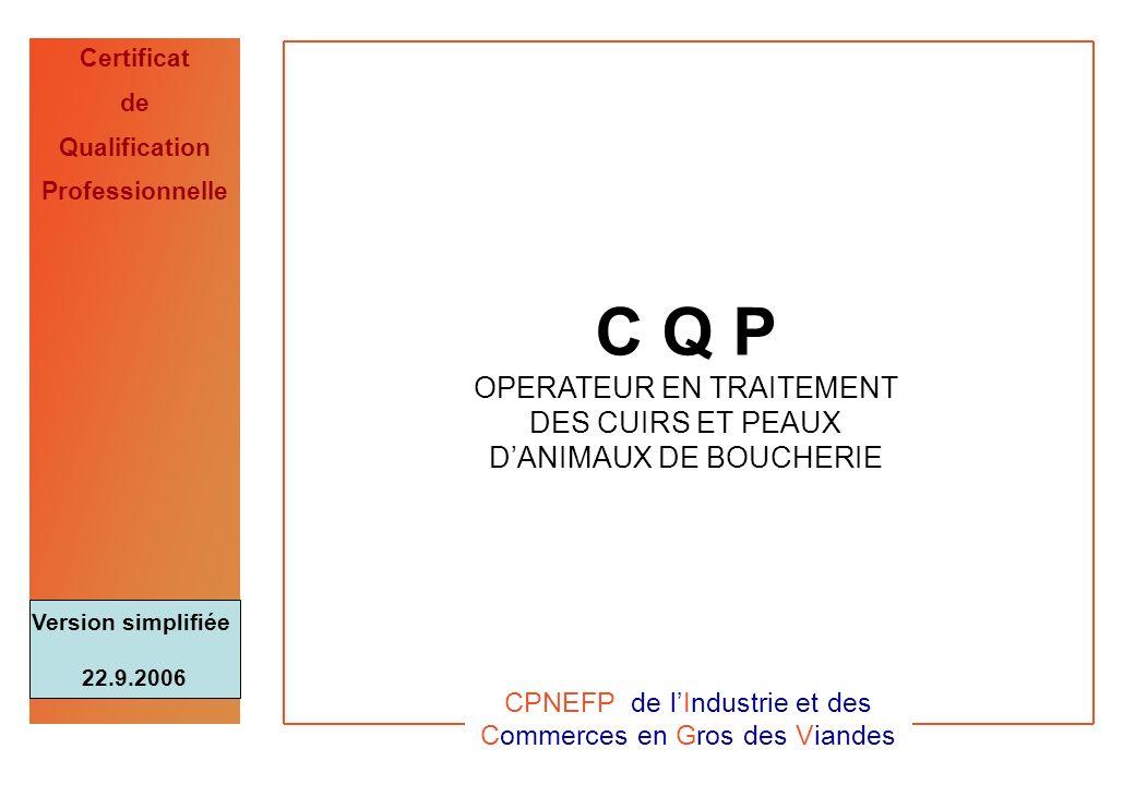 CPNEFP de l'Industrie et des Commerces en Gros des Viandes