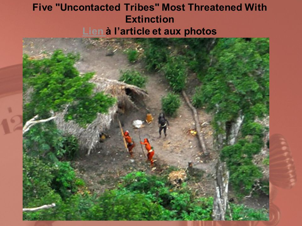 Five Uncontacted Tribes Most Threatened With Extinction Lien à l'article et aux photos