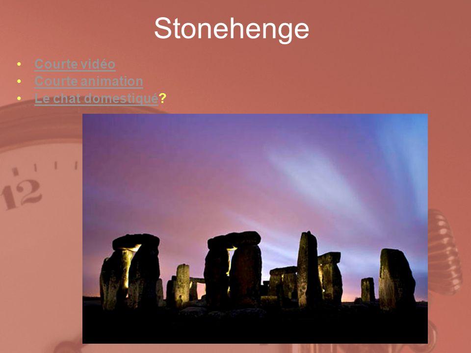 Stonehenge Courte vidéo Courte animation Le chat domestiqué