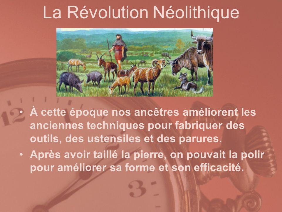 La Révolution Néolithique