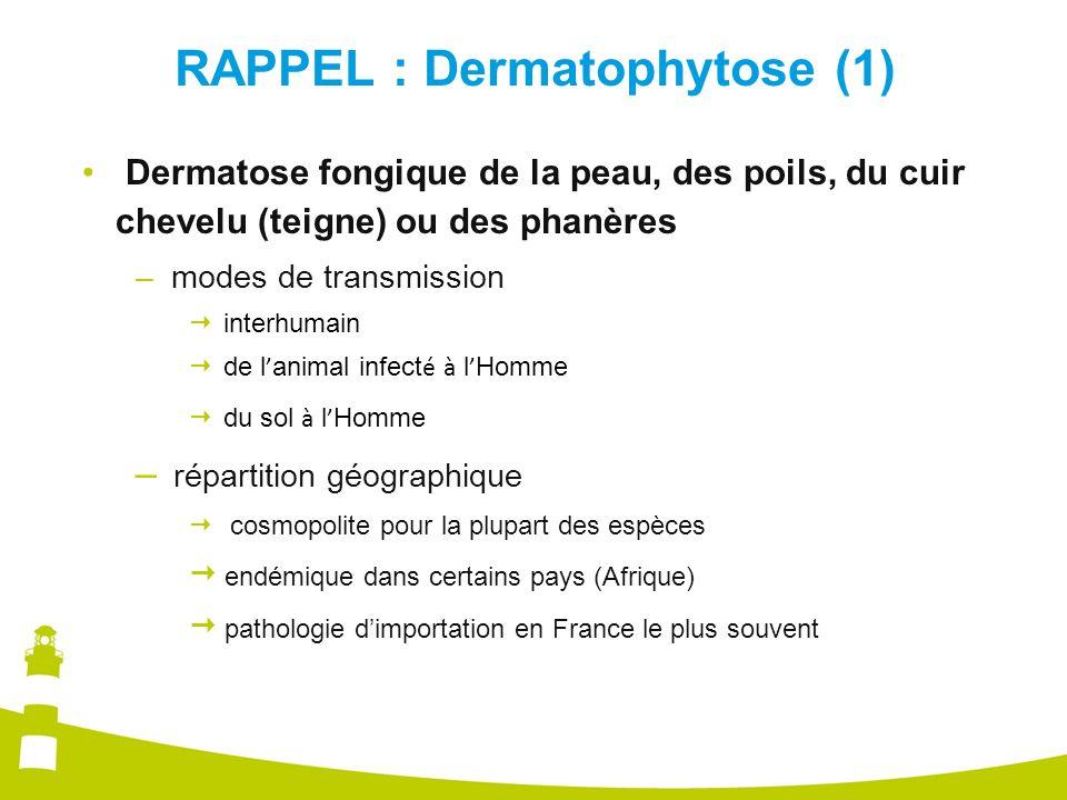 RAPPEL : Dermatophytose (1)