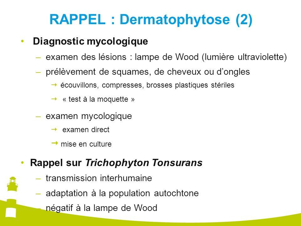 RAPPEL : Dermatophytose (2)