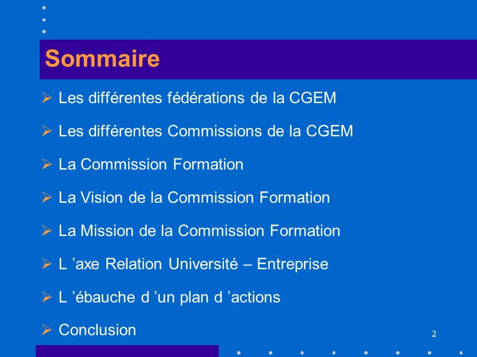 Sommaire Les différentes fédérations de la CGEM