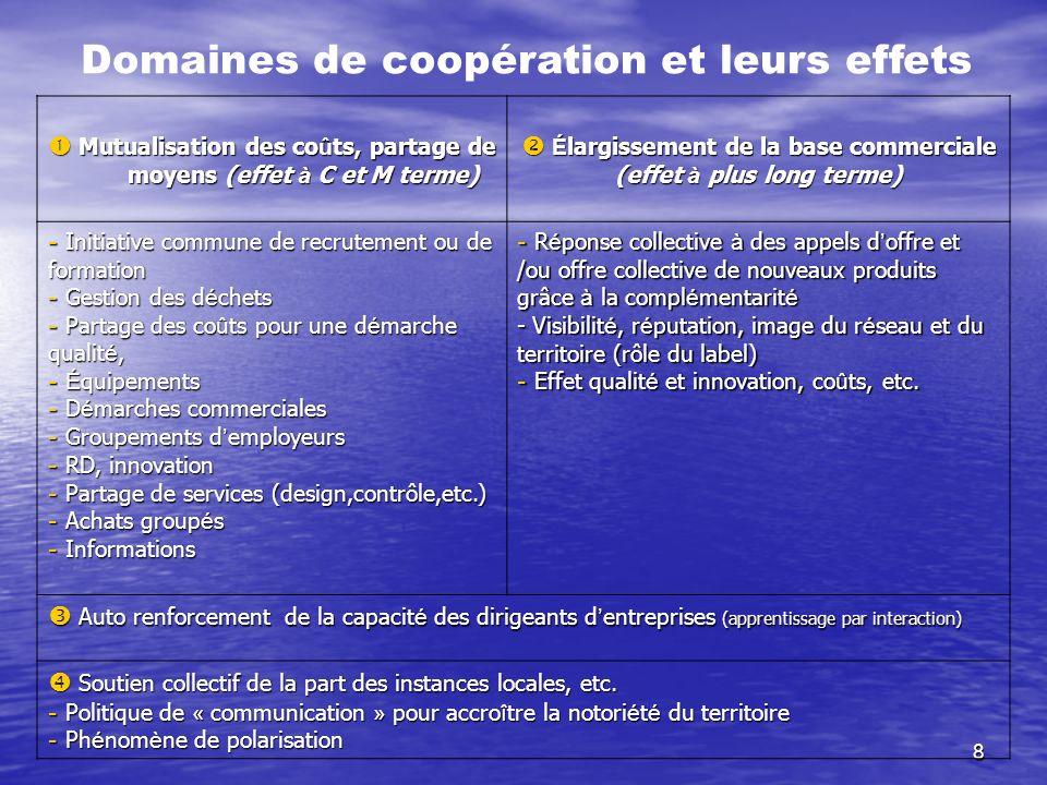Domaines de coopération et leurs effets