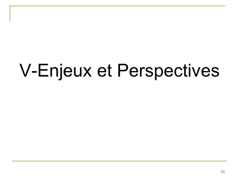 V-Enjeux et Perspectives