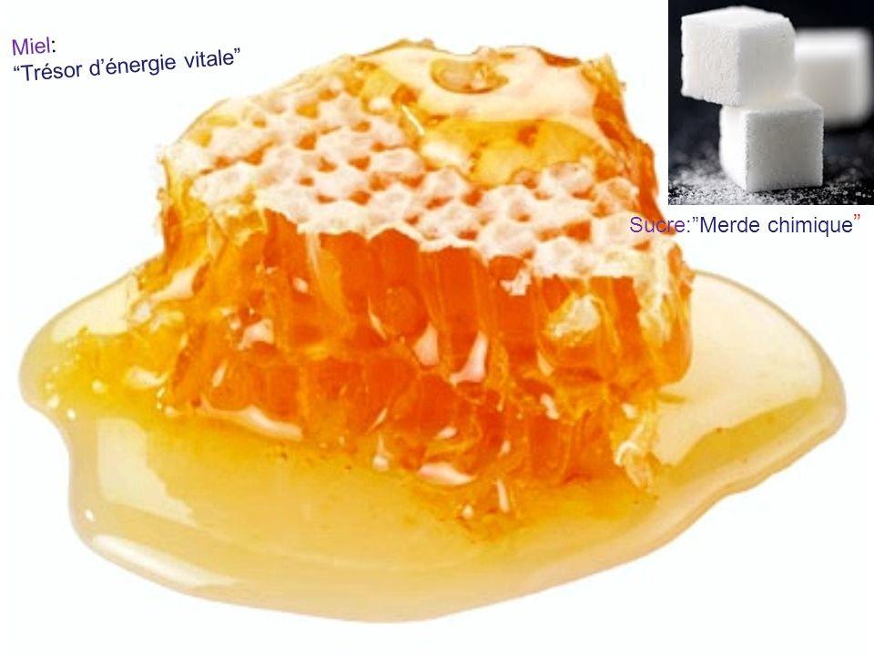 Miel: Trésor d'énergie vitale Sucre: Merde chimique