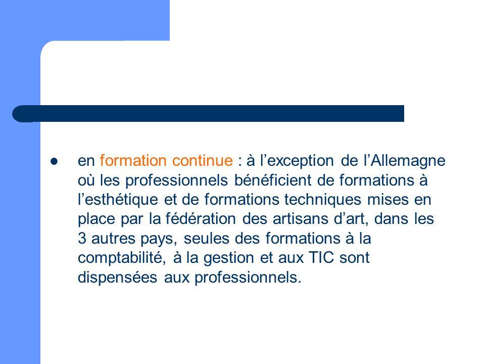 en formation continue : à l'exception de l'Allemagne où les professionnels bénéficient de formations à l'esthétique et de formations techniques mises en place par la fédération des artisans d'art, dans les 3 autres pays, seules des formations à la comptabilité, à la gestion et aux TIC sont dispensées aux professionnels.