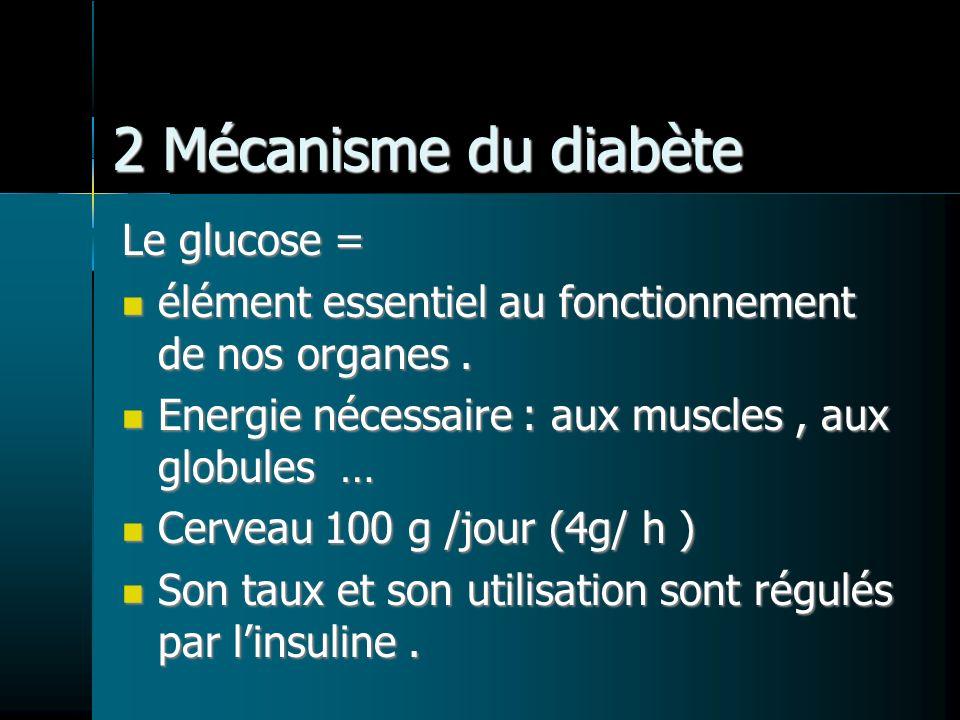 2 Mécanisme du diabète Le glucose =
