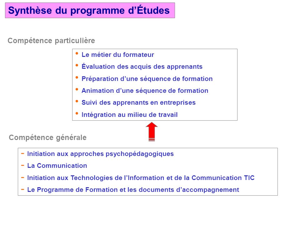Synthèse du programme d'Études