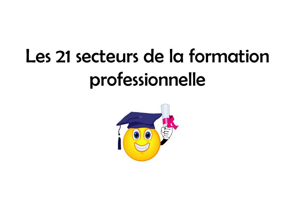 Les 21 secteurs de la formation professionnelle