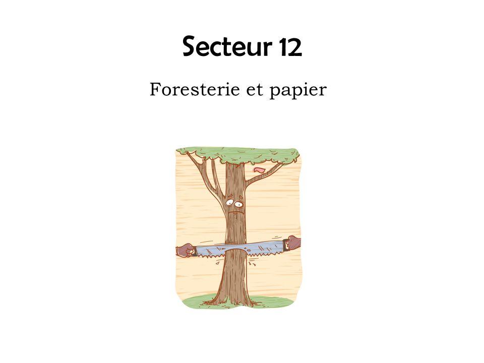 Secteur 12 Foresterie et papier