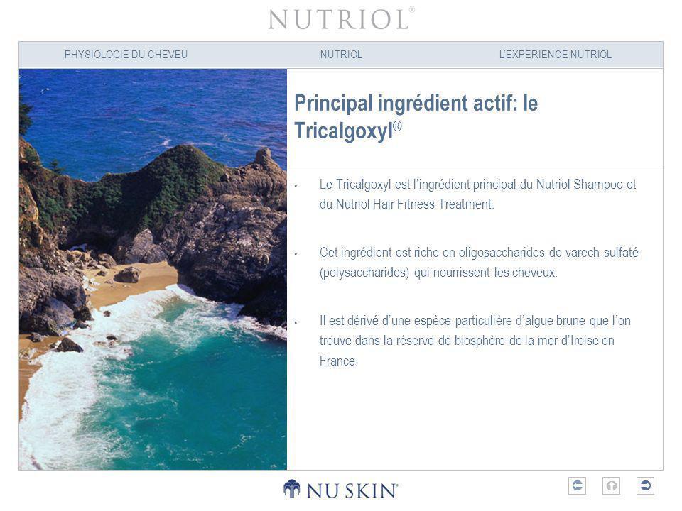 Principal ingrédient actif: le Tricalgoxyl®