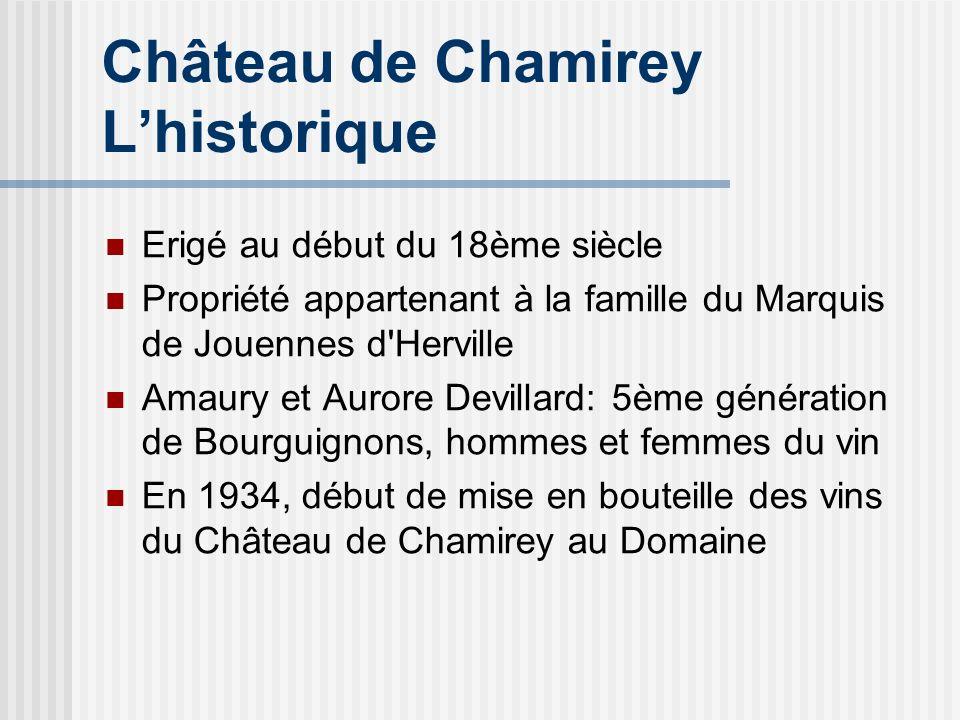 Château de Chamirey L'historique