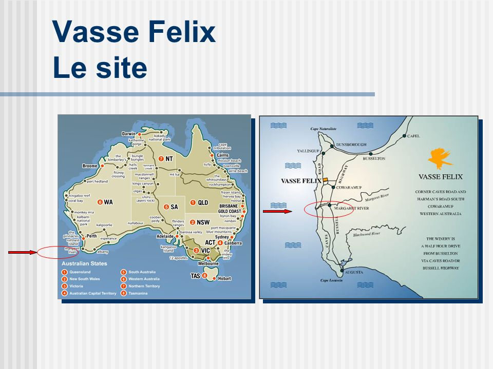 Vasse Felix Le site