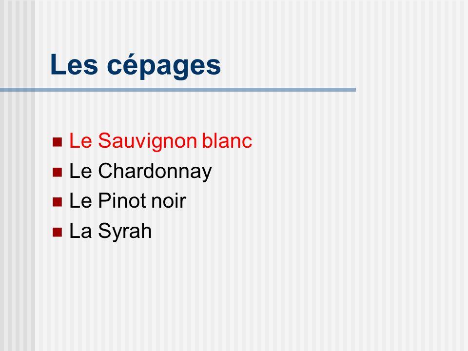 Les cépages Le Sauvignon blanc Le Chardonnay Le Pinot noir La Syrah