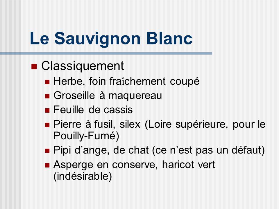Le Sauvignon Blanc Classiquement Herbe, foin fraîchement coupé
