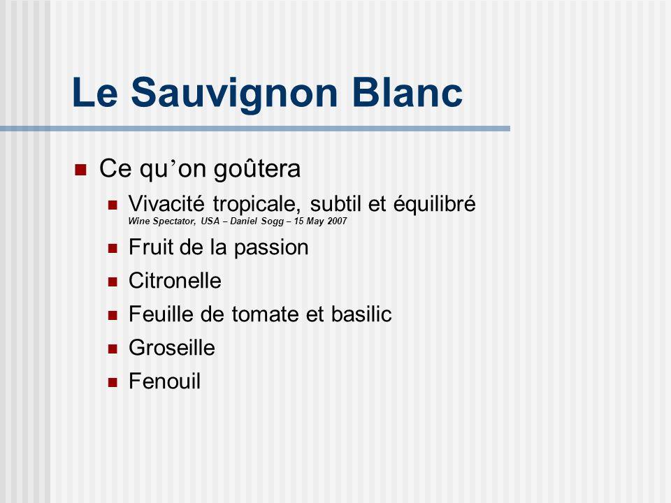 Le Sauvignon Blanc Ce qu'on goûtera