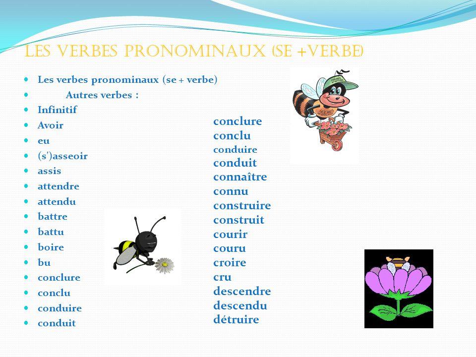 Les verbes pronominaux (se +verbe)