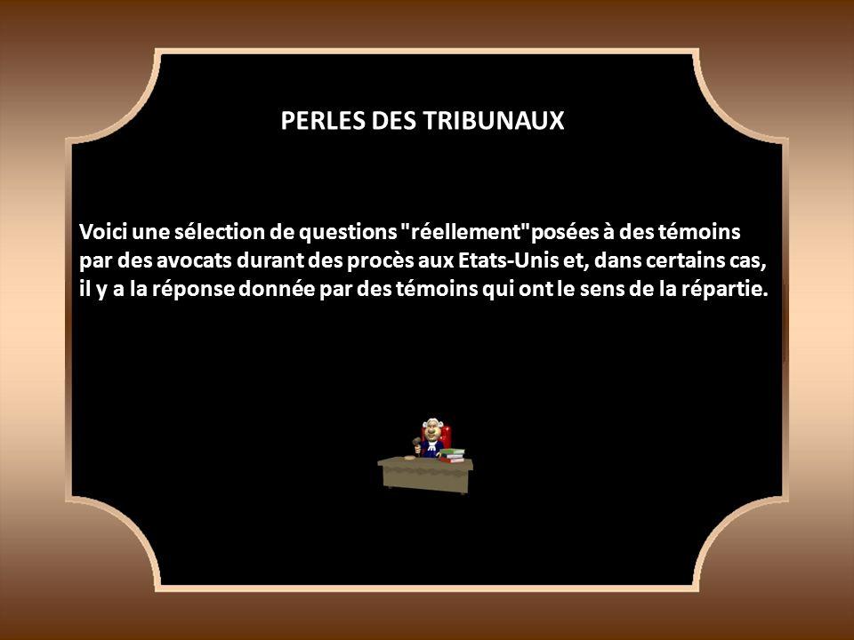 PERLES DES TRIBUNAUX