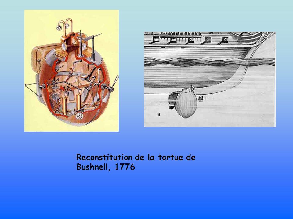 Reconstitution de la tortue de Bushnell, 1776