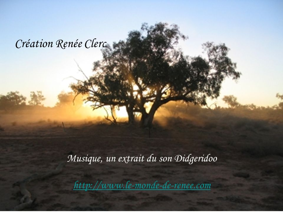 Création Renée Clerc Musique, un extrait du son Didgeridoo