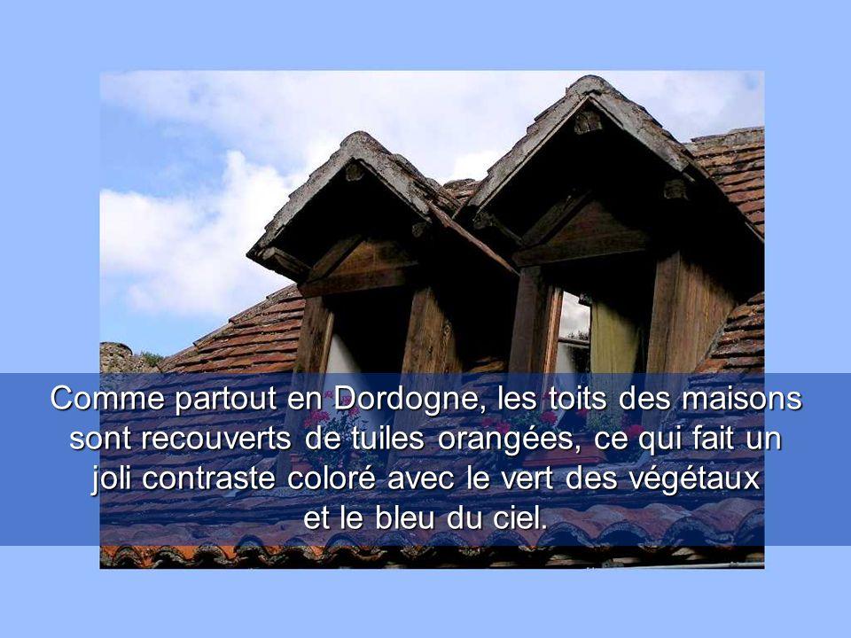 Comme partout en Dordogne, les toits des maisons sont recouverts de tuiles orangées, ce qui fait un joli contraste coloré avec le vert des végétaux et le bleu du ciel.