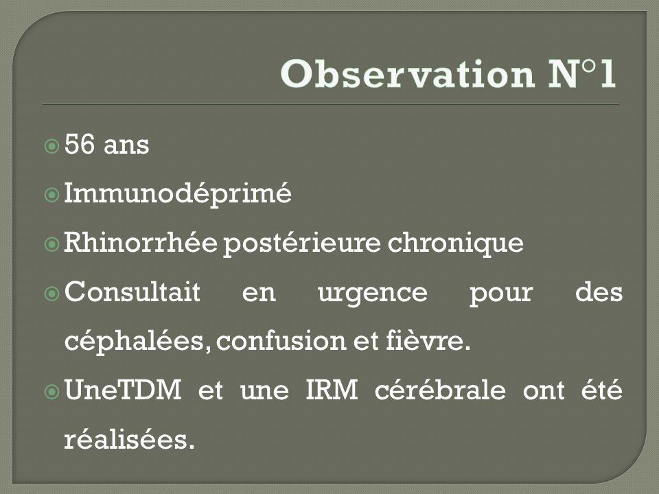 Observation N°1 56 ans Immunodéprimé Rhinorrhée postérieure chronique