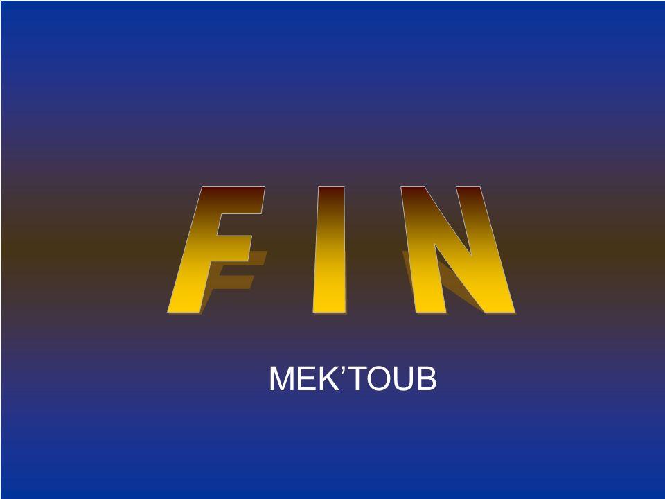 F I N MEK'TOUB