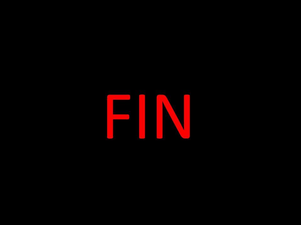 FIN 53