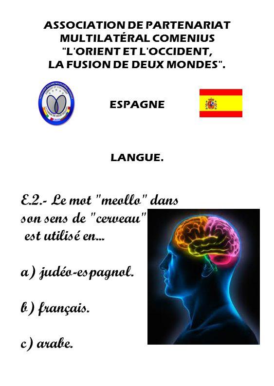 E.2.- Le mot meollo dans son sens de cerveau est utilisé en...