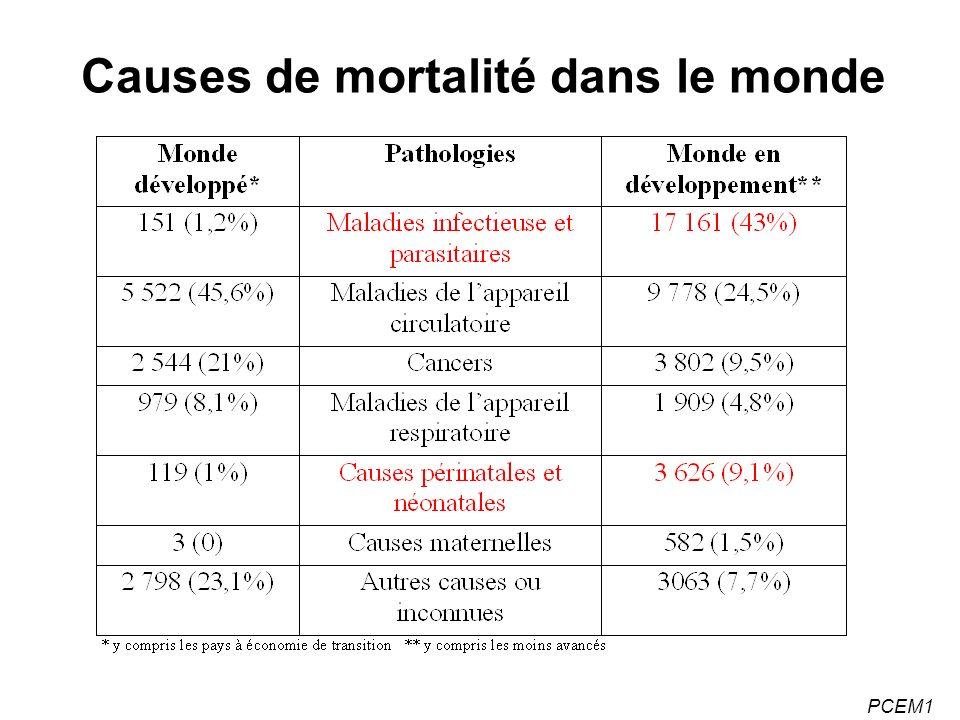 Causes de mortalité dans le monde