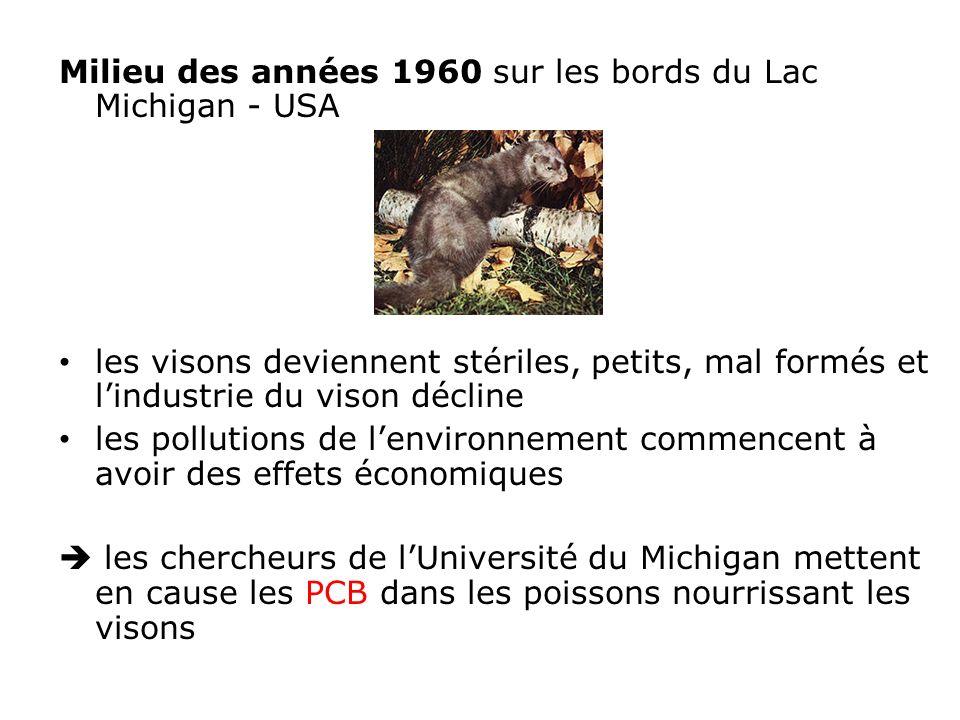 Milieu des années 1960 sur les bords du Lac Michigan - USA