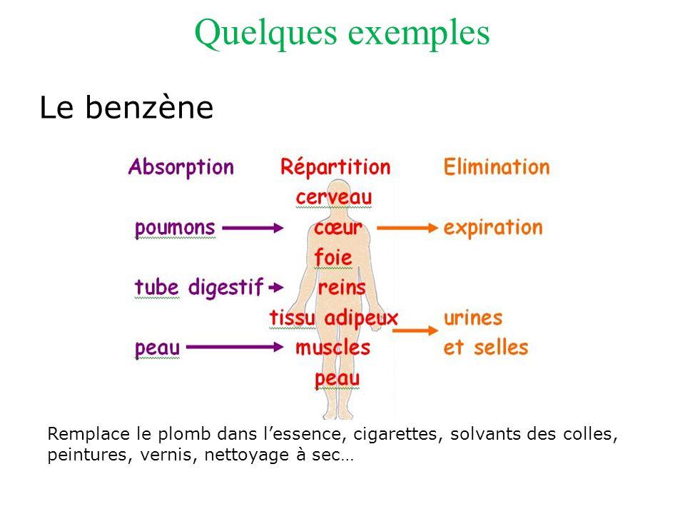 Quelques exemples Le benzène