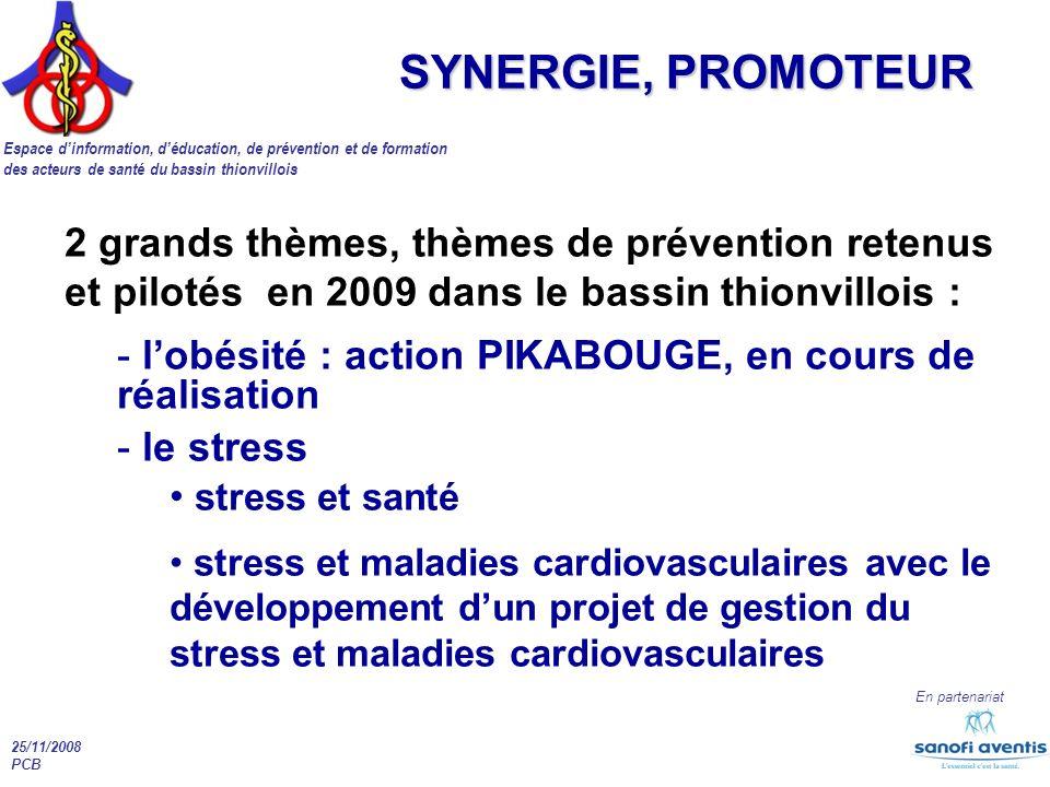 SYNERGIE, PROMOTEUR 2 grands thèmes, thèmes de prévention retenus et pilotés en 2009 dans le bassin thionvillois :