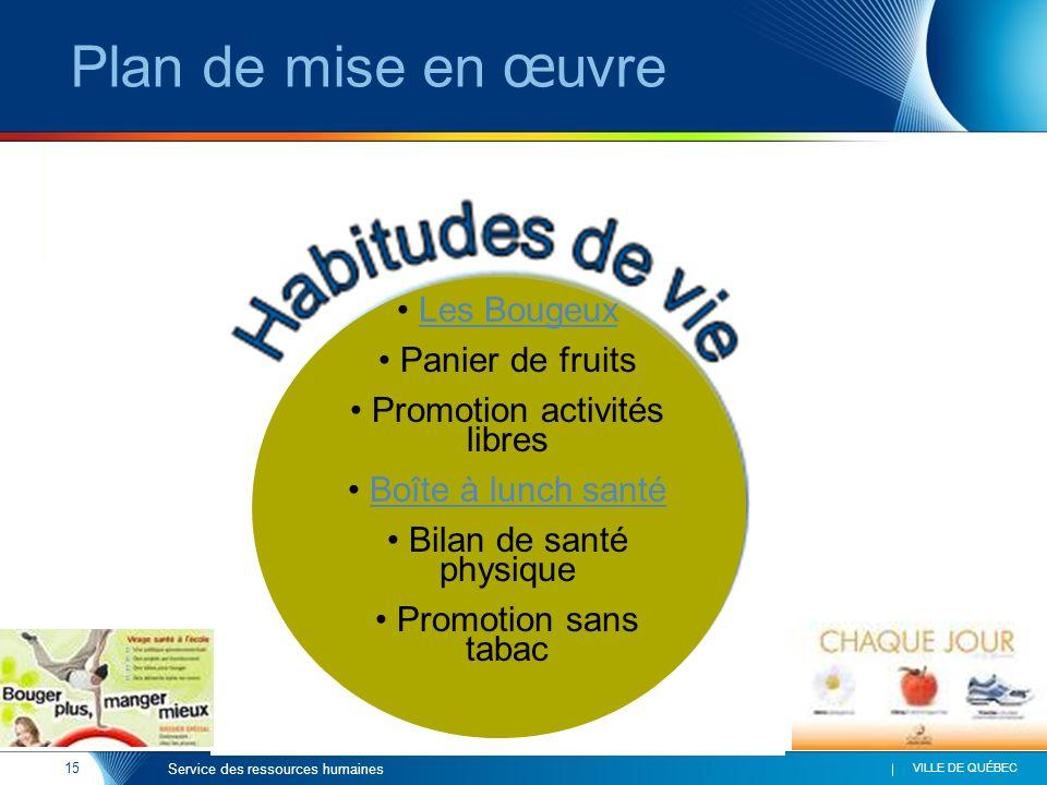 Plan de mise en œuvre Les Bougeux Panier de fruits