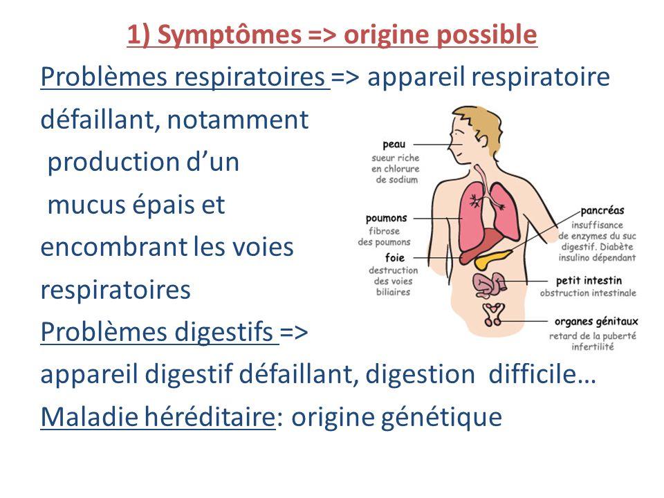 1) Symptômes => origine possible Problèmes respiratoires => appareil respiratoire défaillant, notamment production d'un mucus épais et encombrant les voies respiratoires Problèmes digestifs => appareil digestif défaillant, digestion difficile… Maladie héréditaire: origine génétique