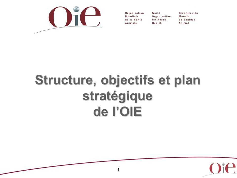 Structure, objectifs et plan stratégique