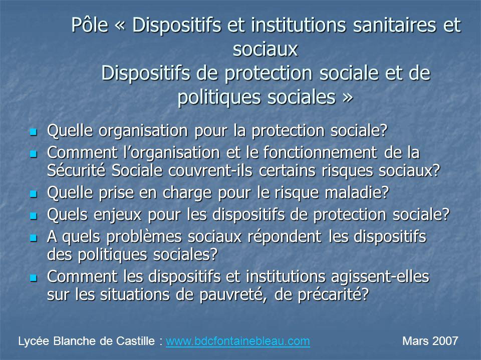 Pôle « Dispositifs et institutions sanitaires et sociaux Dispositifs de protection sociale et de politiques sociales »