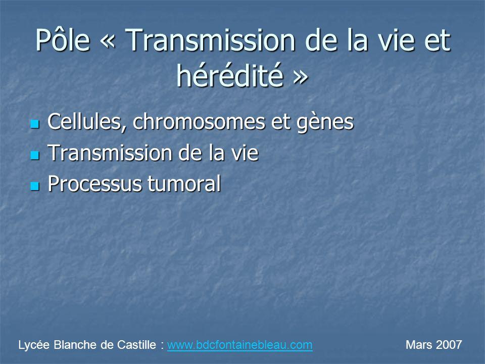 Pôle « Transmission de la vie et hérédité »
