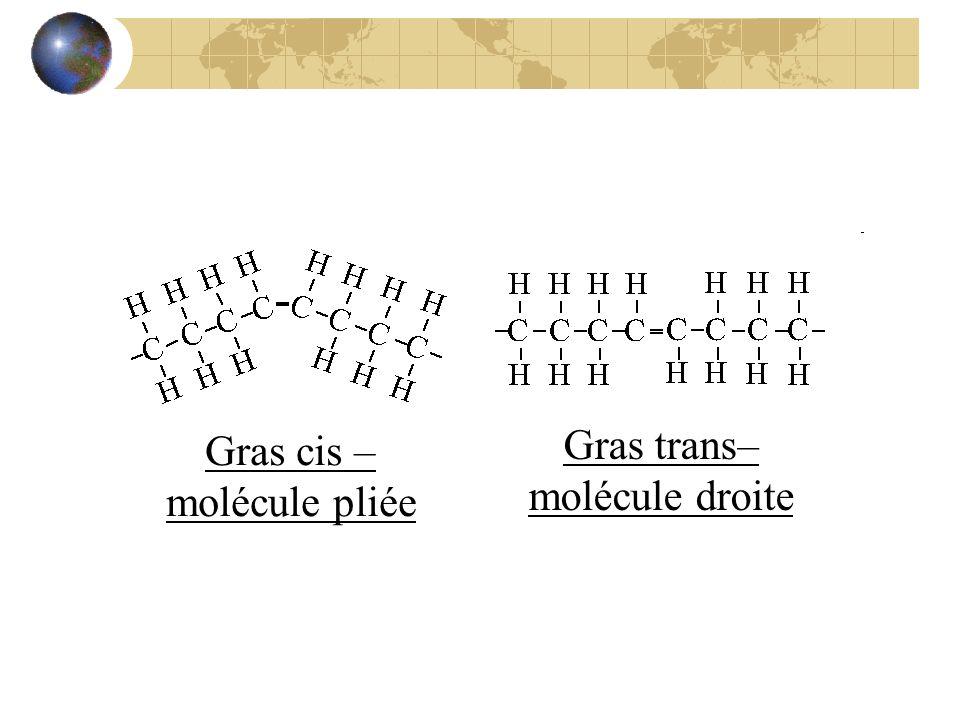 Gras cis – molécule pliée Gras trans– molécule droite