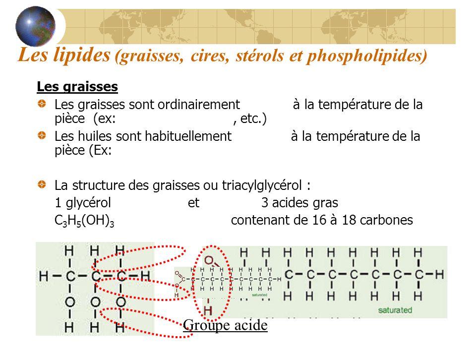 Les lipides (graisses, cires, stérols et phospholipides)