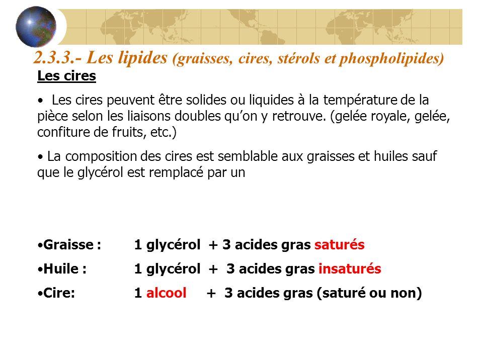 2.3.3.- Les lipides (graisses, cires, stérols et phospholipides)