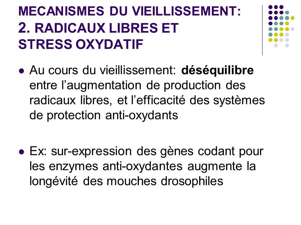 MECANISMES DU VIEILLISSEMENT: 2. RADICAUX LIBRES ET STRESS OXYDATIF