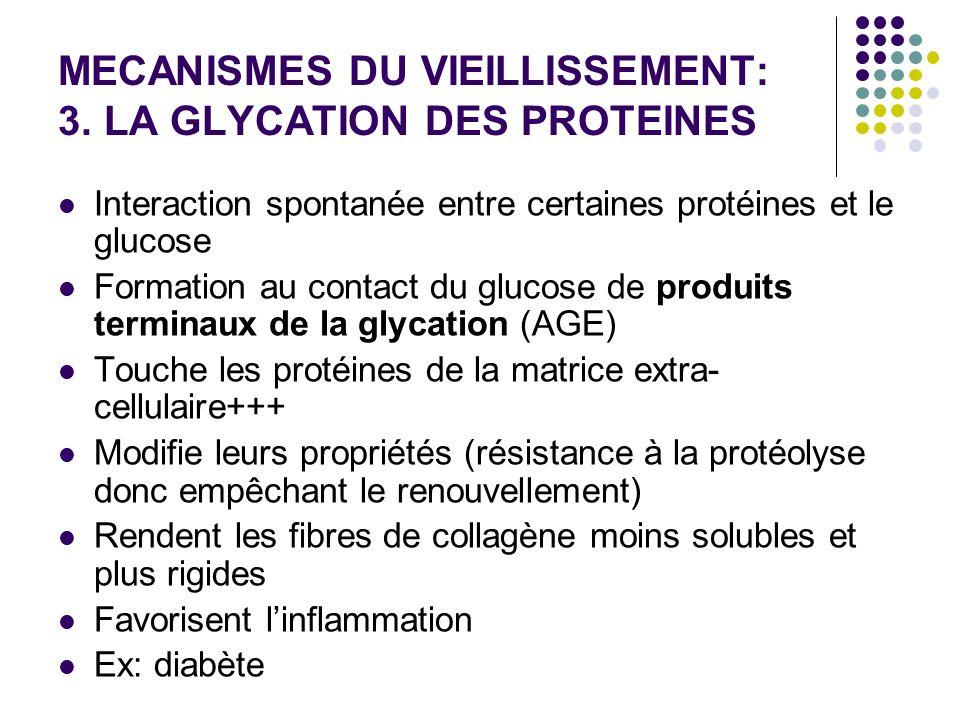 MECANISMES DU VIEILLISSEMENT: 3. LA GLYCATION DES PROTEINES